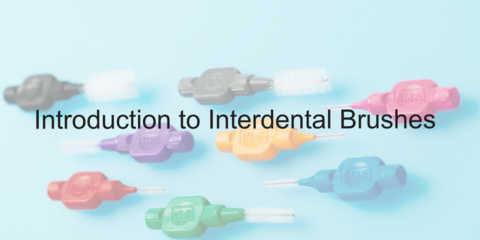 Introduction to Interdental Bushes - Video